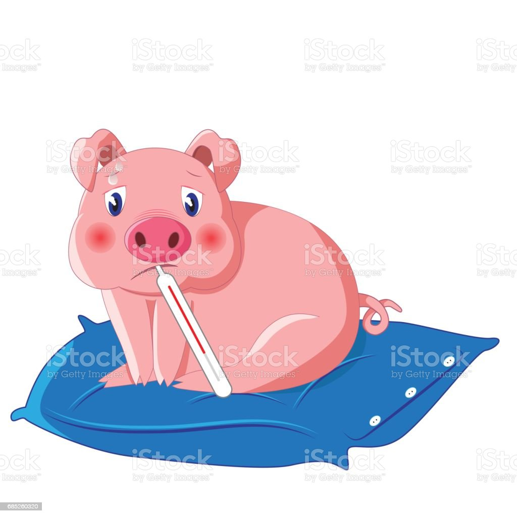 cute pig with thermometer having swine flu vector art illustration