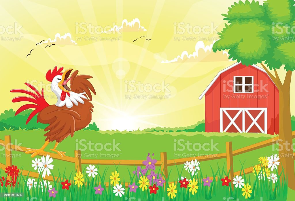cute rooster crowing in the farm fence vector art illustration