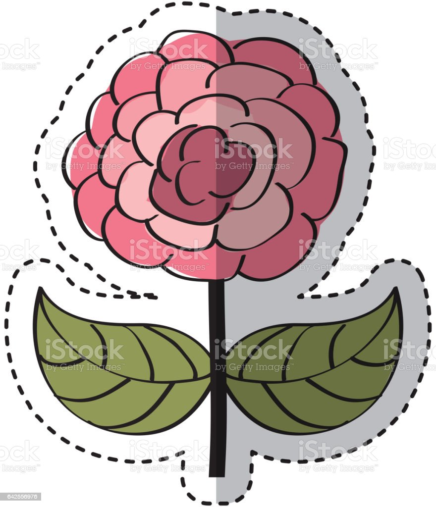 cute rose drawing icon vector art illustration