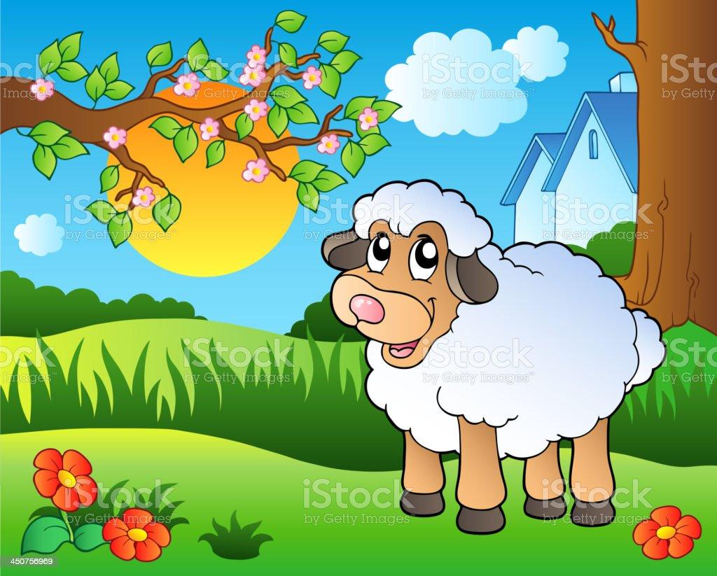 Cute sheep on spring meadow vector art illustration