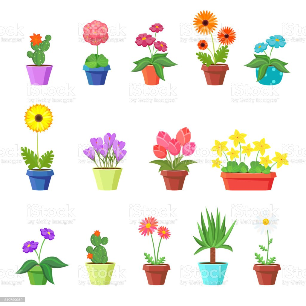 Cute spring flowers in pots vector vector art illustration