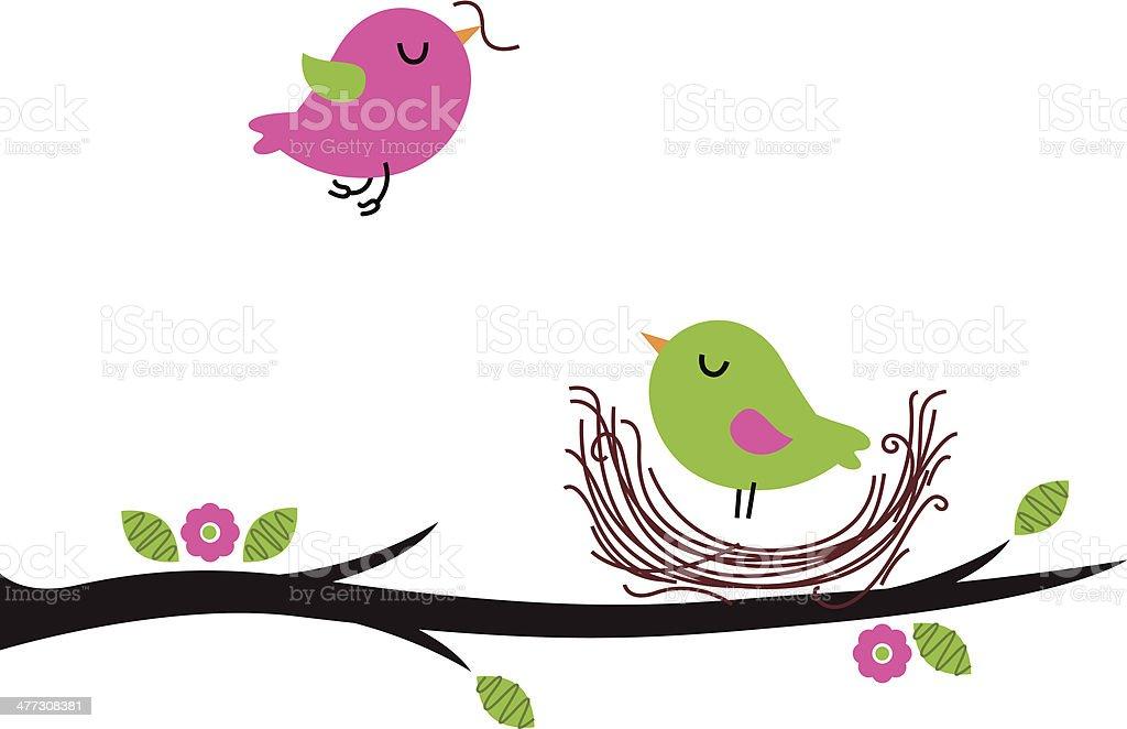 Cute spring nesting birds isolated on white vector art illustration