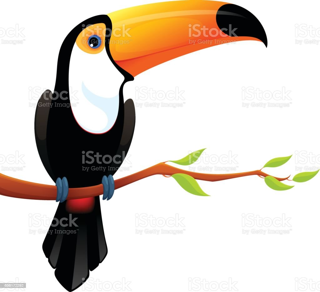 Toucan Clip Art Vector Images Amp Illustrations Istock