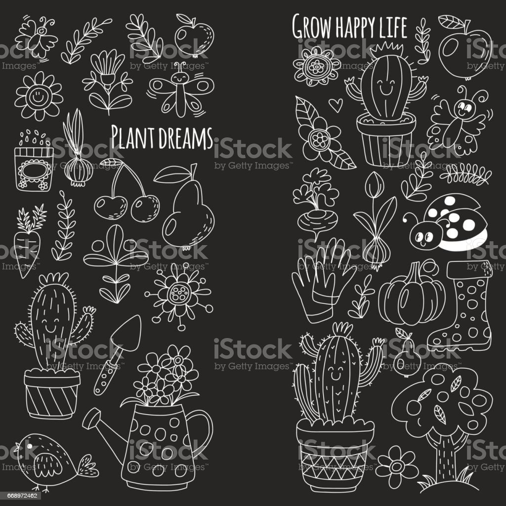 Cute vector garden with birds, cactus, plants, fruits, berries, gardening tools, rubberboots Garden market pattern in doodle style isolated on blackboard vector art illustration