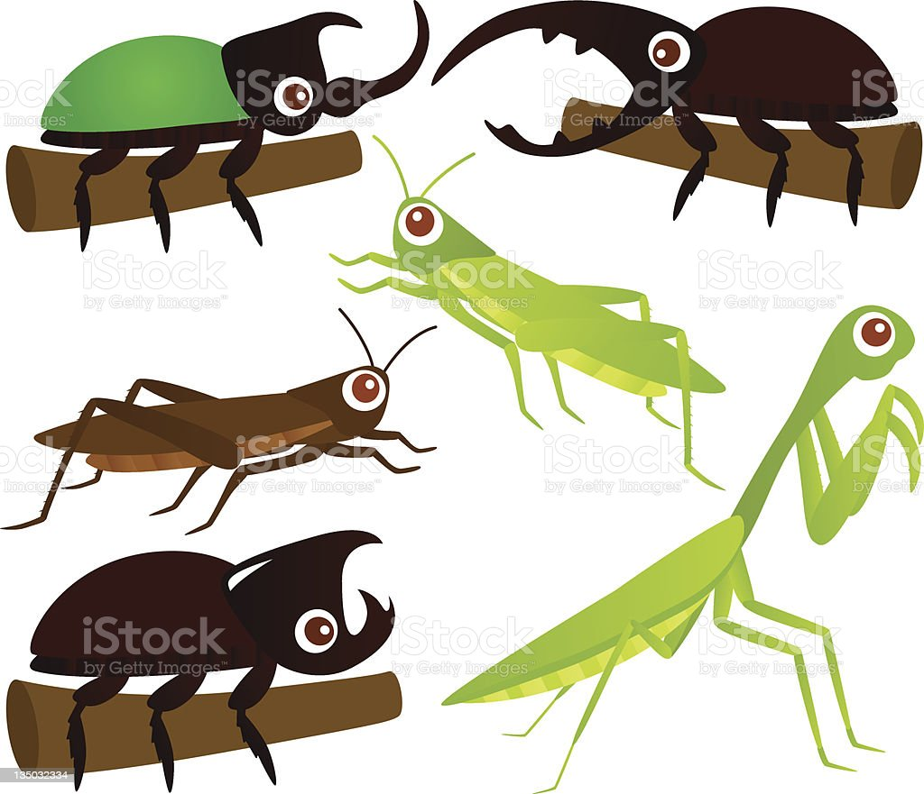 Cute vector Icons : Animal : Grasshopper & Beetle vector art illustration