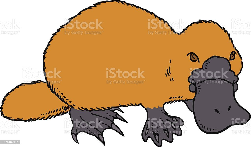 Cute vector platypus - Ornithorhynchus anatinus or Duckbill vector art illustration