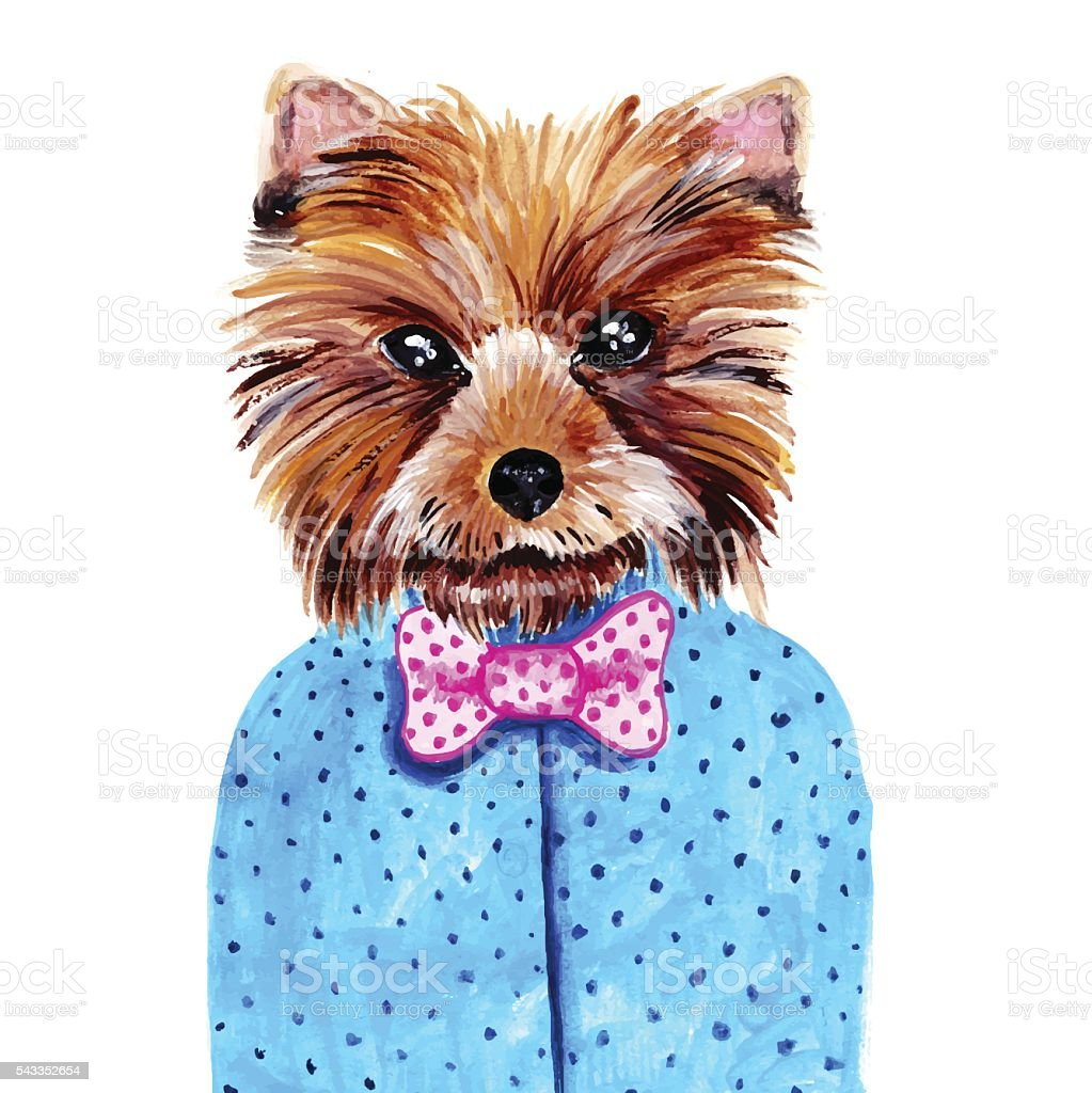 Cute watercolor yorkshire terrier portrait with bow tie. vector art illustration