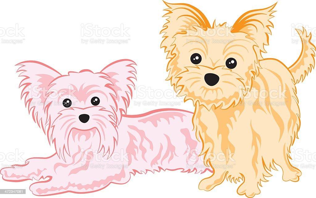 Cute yorkshire terriers vector art illustration