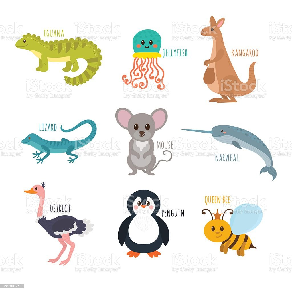 ABC. Cute zoo alphabet in vector. Funny cartoon animals. vector art illustration