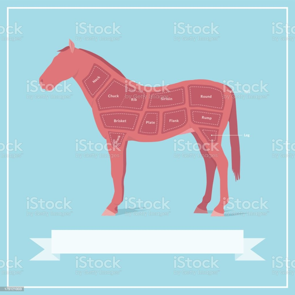 Cuts of Horse Meat vector art illustration