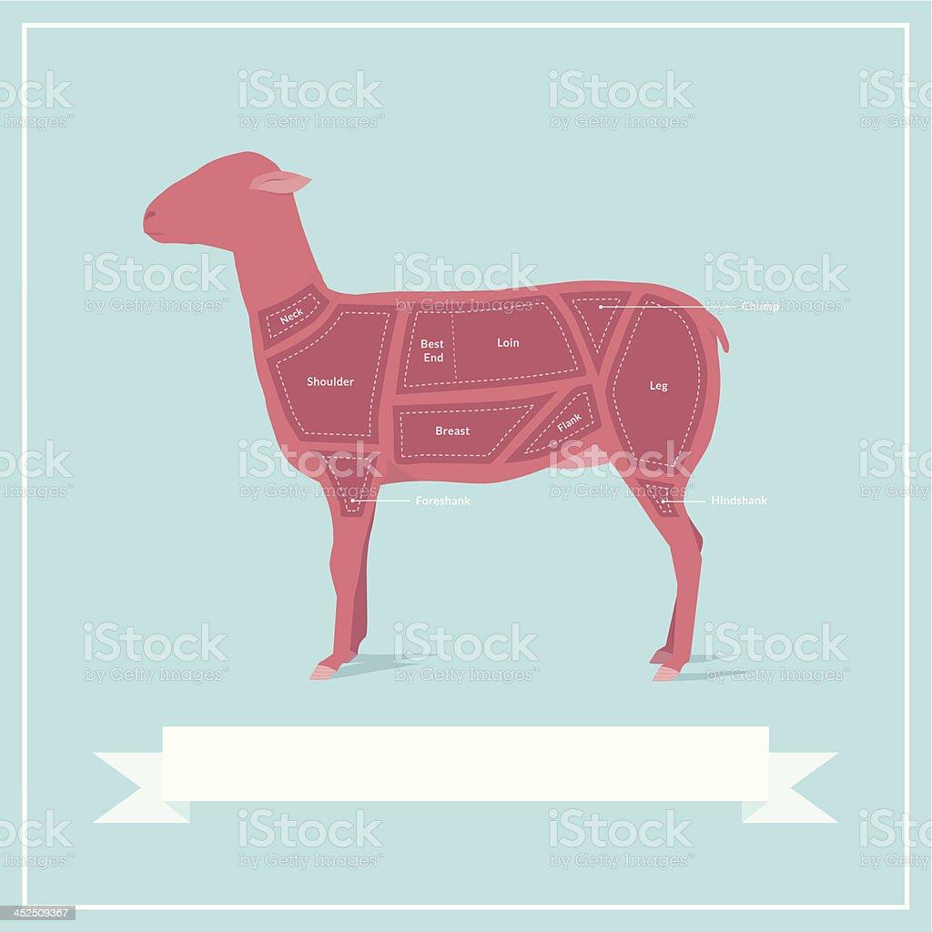 Cuts of Lamb vector art illustration