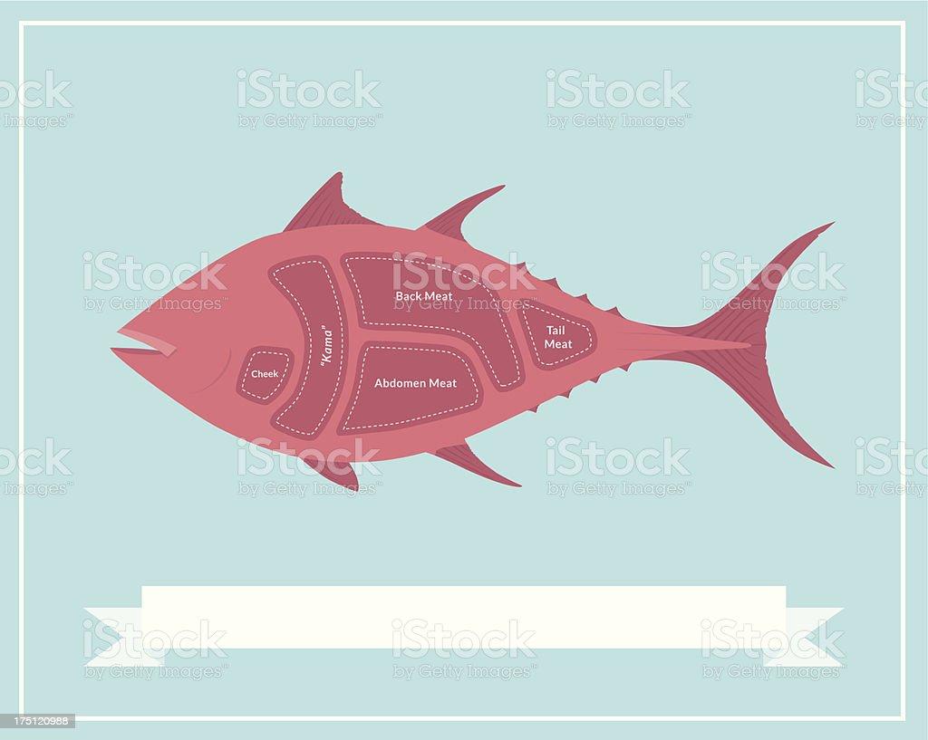 Cuts of Tuna - Sushi vector art illustration