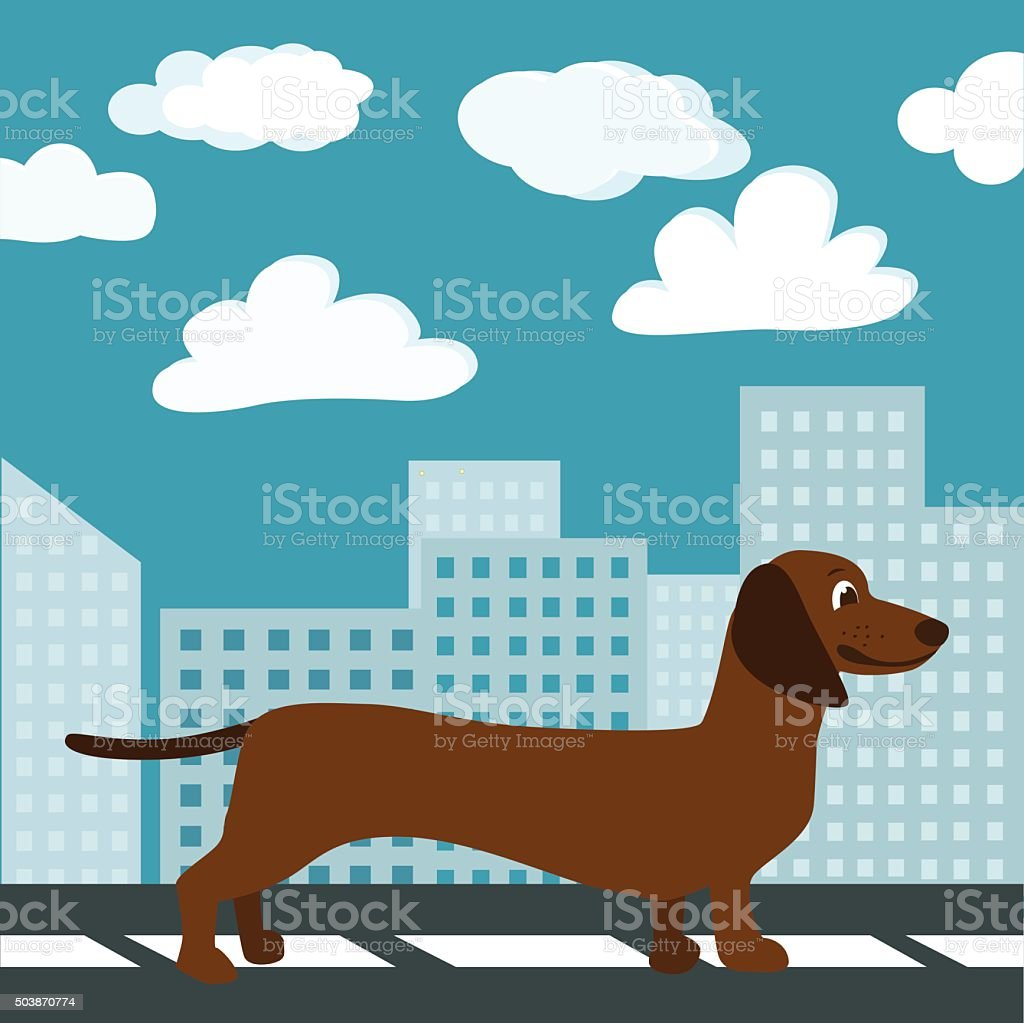Dachshund in the City vector art illustration