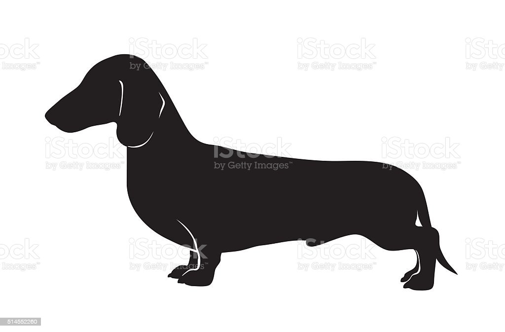 dachshund silhouette vector art illustration