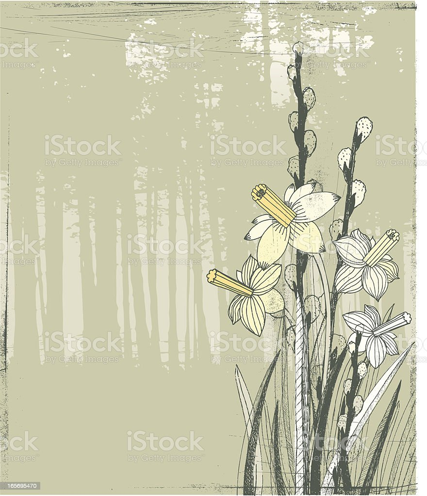 Daffodils and willows on woodland background royalty-free stock vector art