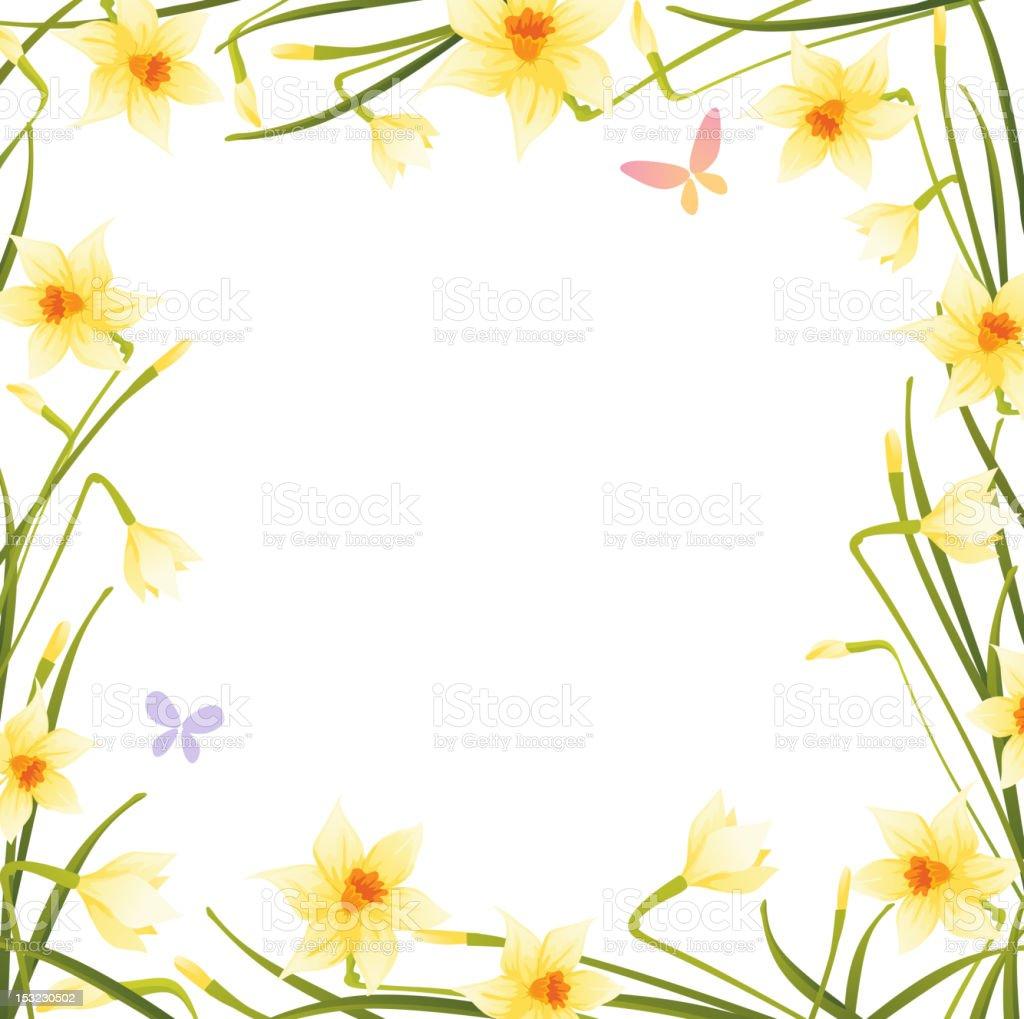 Daffodils frame royalty-free stock vector art