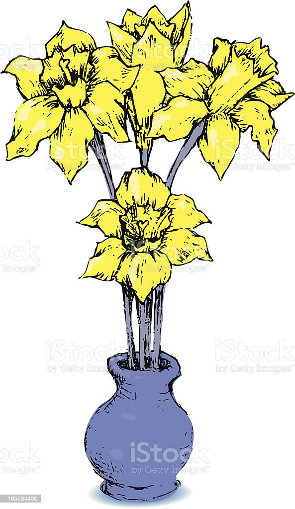 Daffodils royalty-free stock vector art