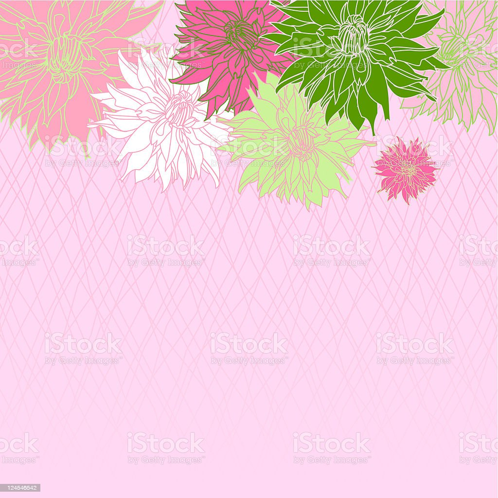 Dahlia Background (Pink) royalty-free stock vector art