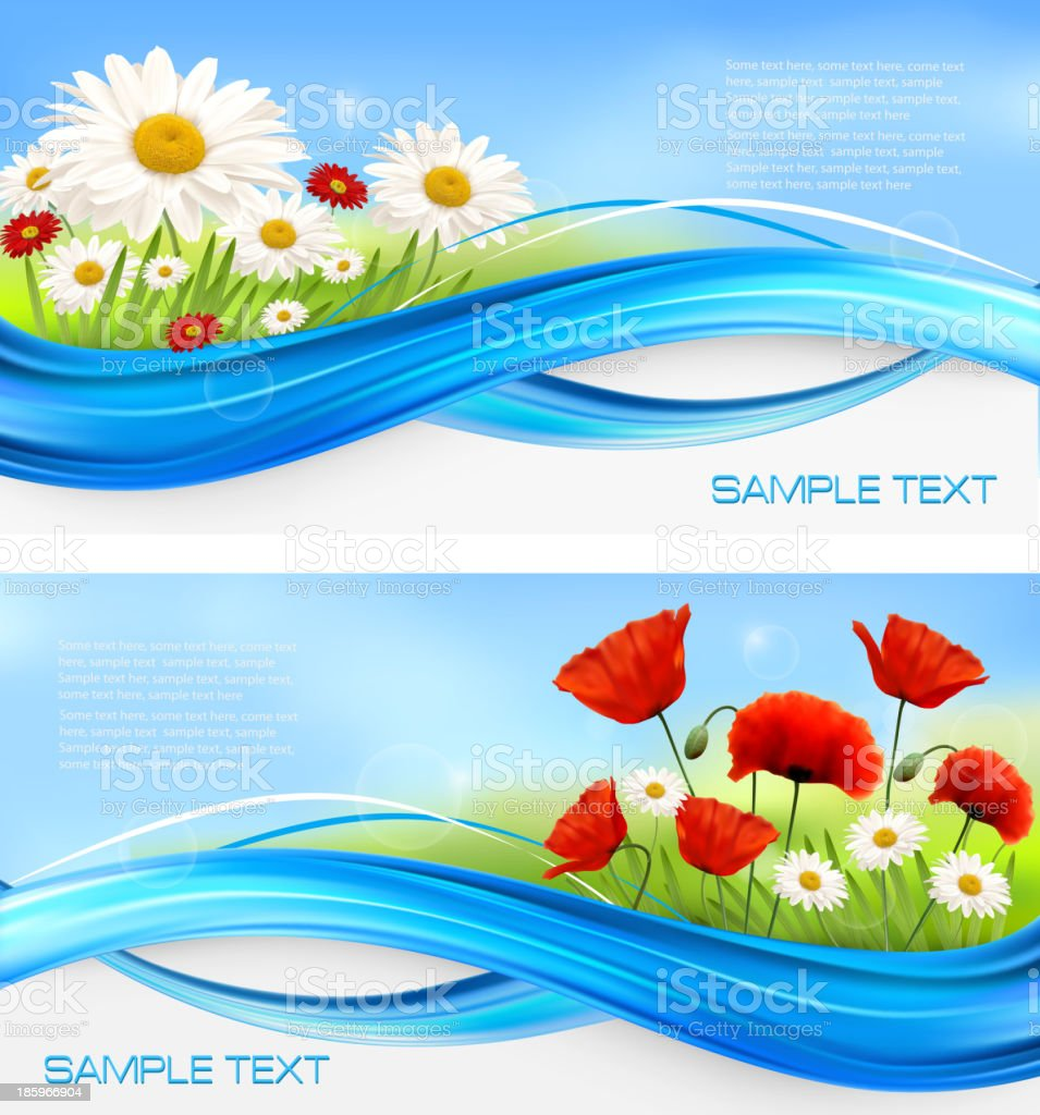 Daisies and poppies royalty-free stock vector art