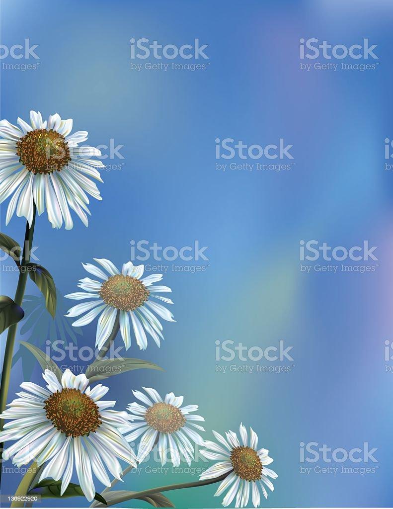 Daisies on a Blue Sky royalty-free stock vector art