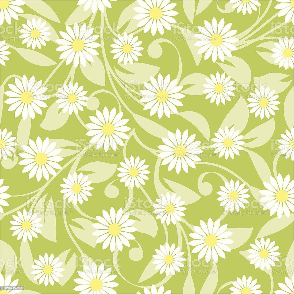 Daisies royalty-free stock vector art