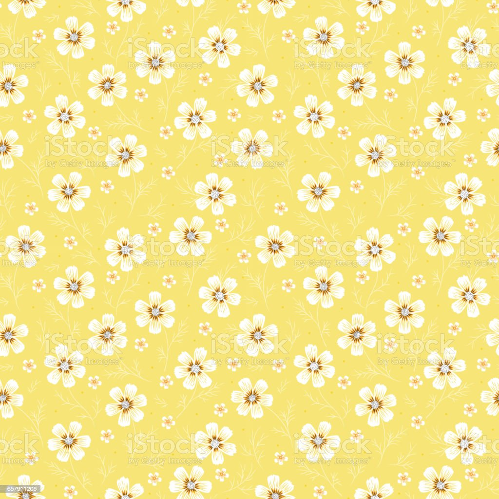 Daisies. Vintage Floral Seamless Pattern. Cosmos Flower. Small White Flowers on Yellow Background. Vector illustration vector art illustration