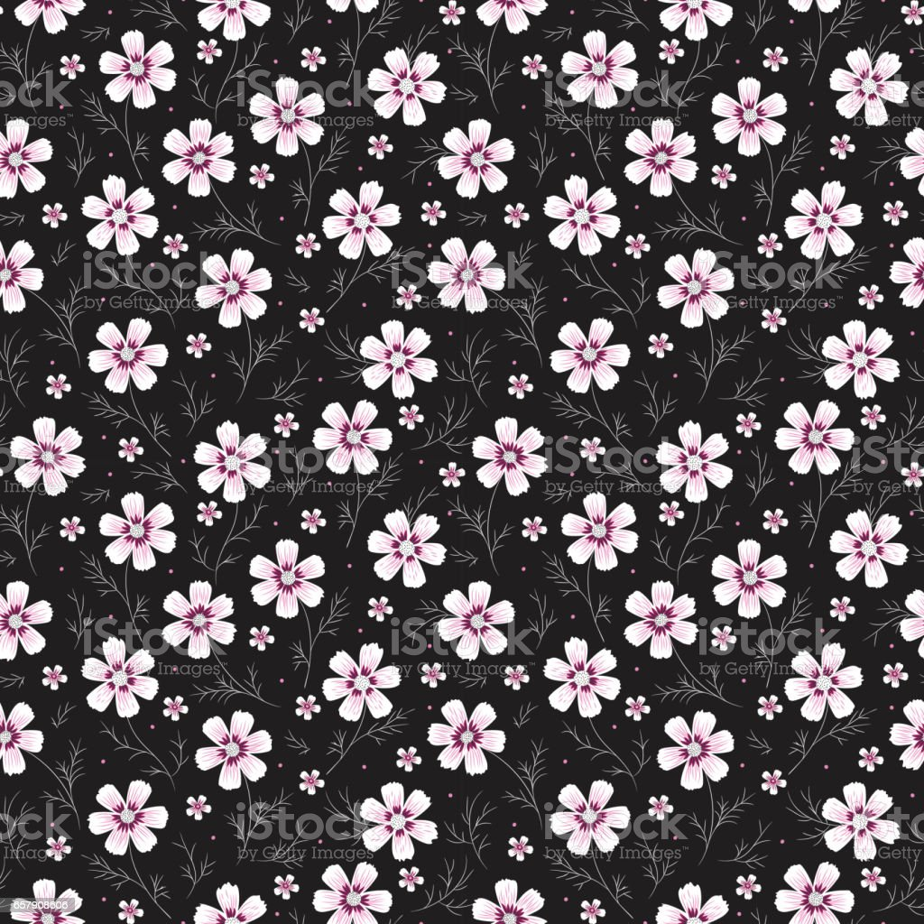 Daisies. Vintage Floral Seamless Pattern. Cosmos Flower. Small White Purple Flowers on Black Background. Vector illustration vector art illustration