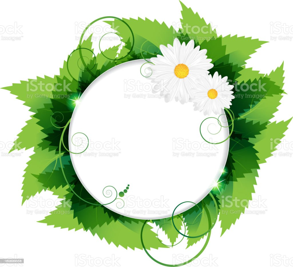 Daisies With Leaves royalty-free stock vector art