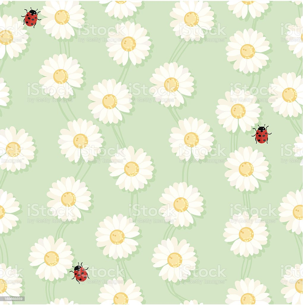 Daisy chain and Ladybug Seamless Pattern vector art illustration