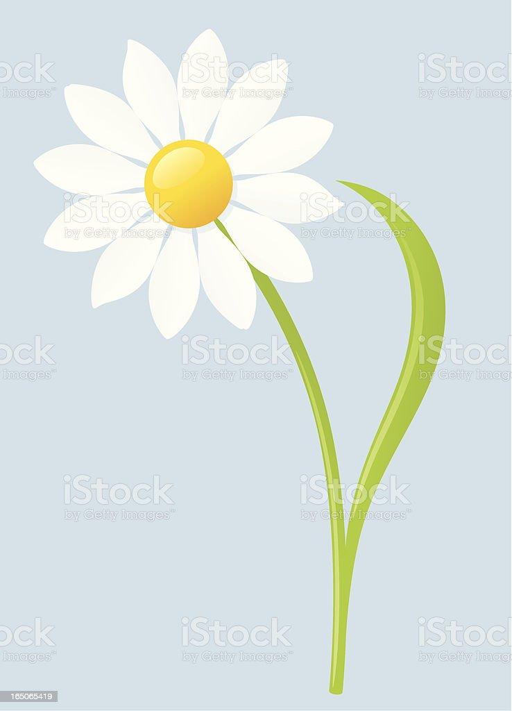 Daisy - incl. jpeg royalty-free stock vector art