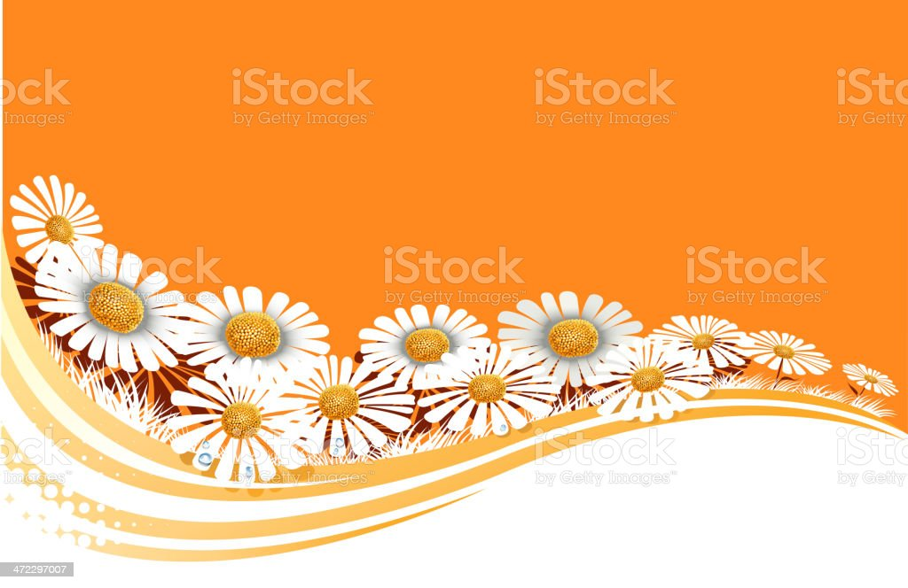 daisy wave royalty-free stock vector art