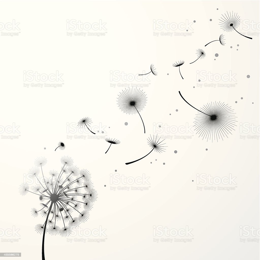Dandelion Background vector art illustration
