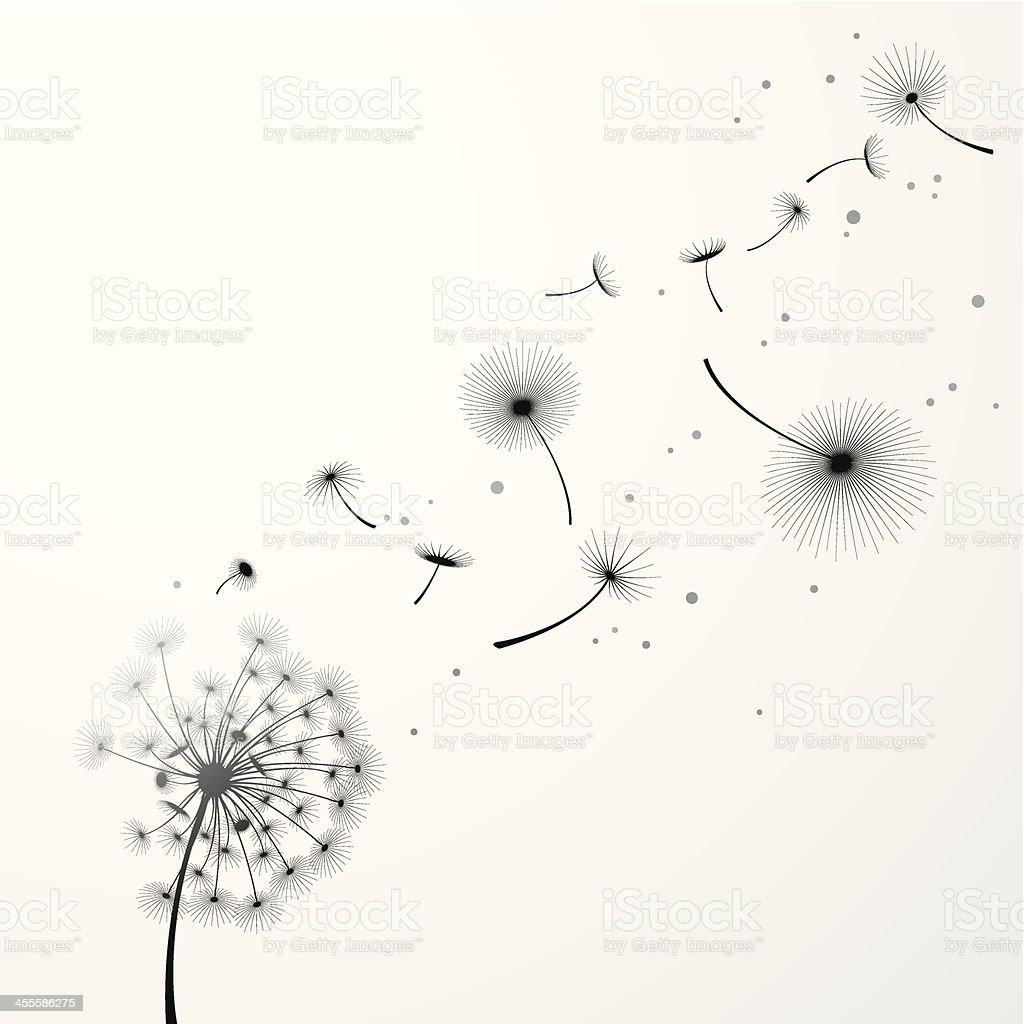Dandelion Background vector art illustration