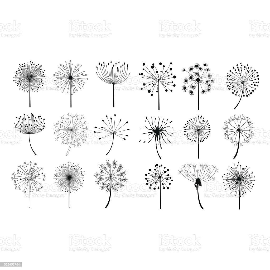 Dandelion Fluffy Seeds Flowers Set vector art illustration