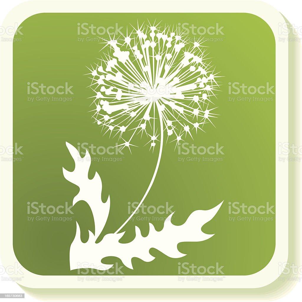 Dandelion icon royalty-free stock vector art