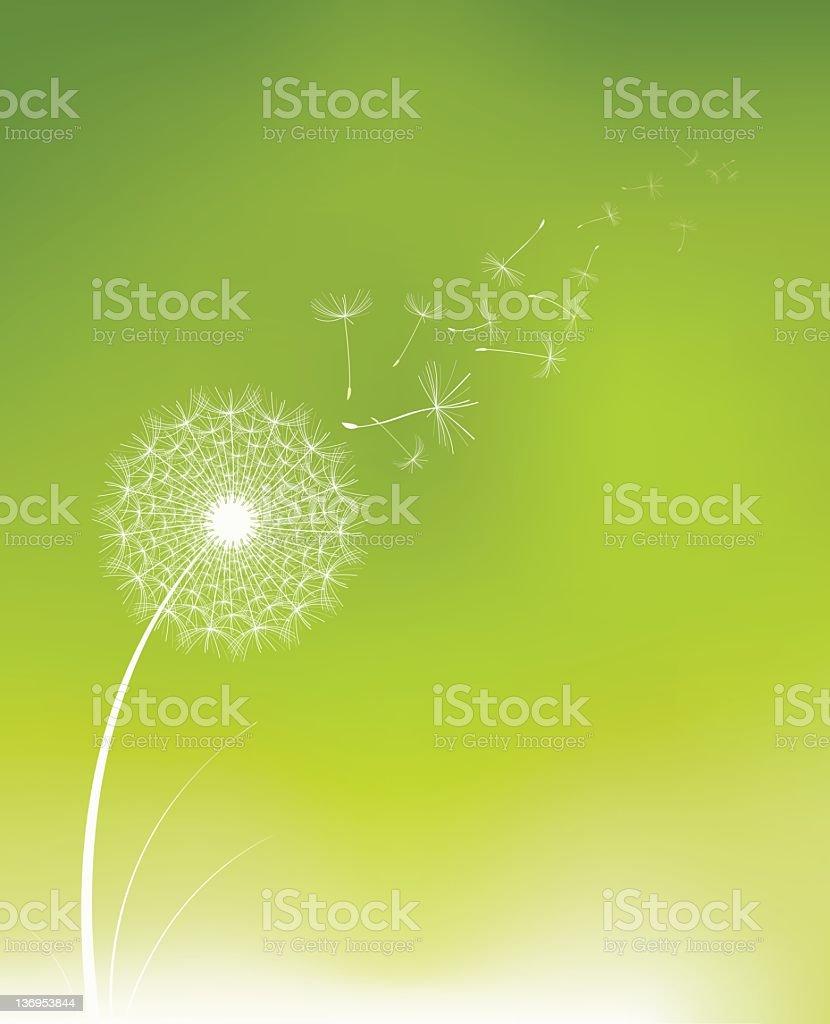 Dandelion seed vector art illustration