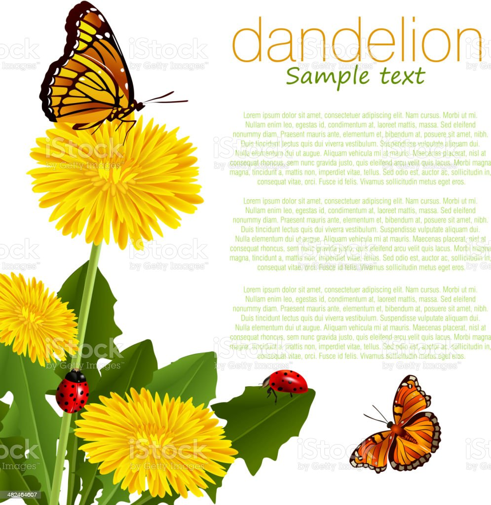 Dandelion vector art illustration