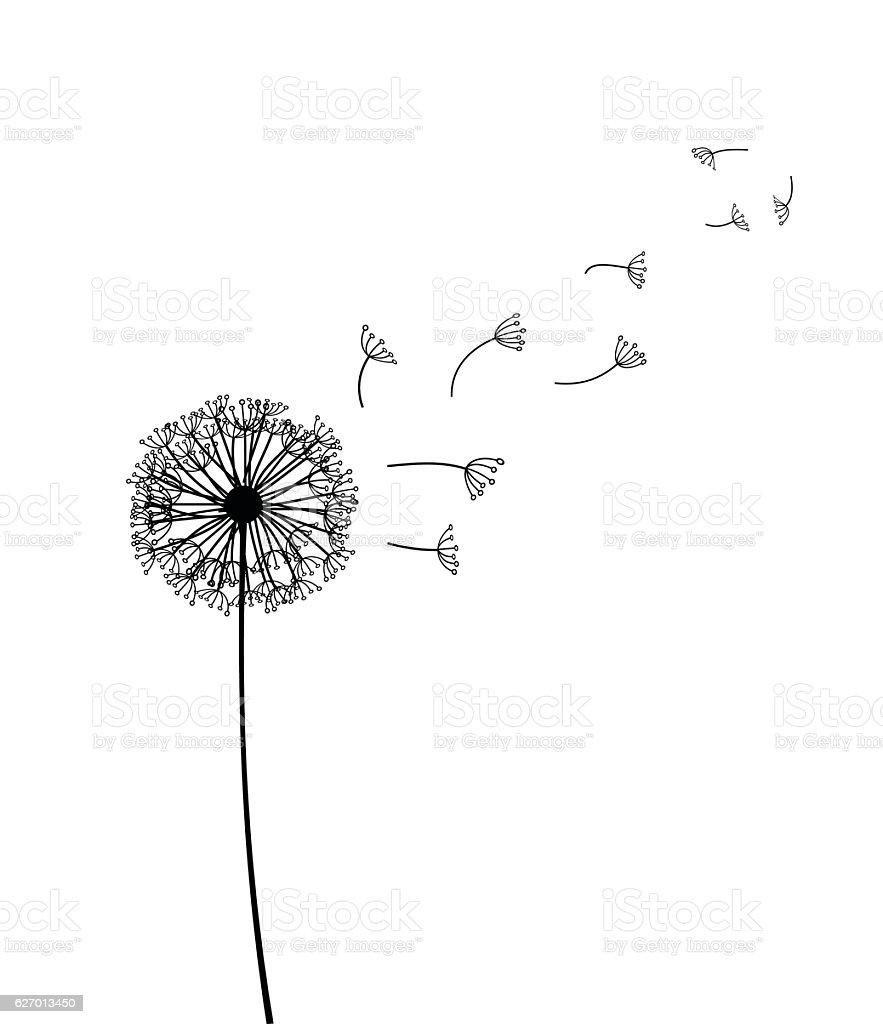 Dandelion vector illustration vector art illustration