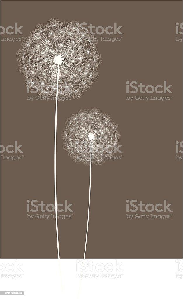 Dandelions vector art illustration