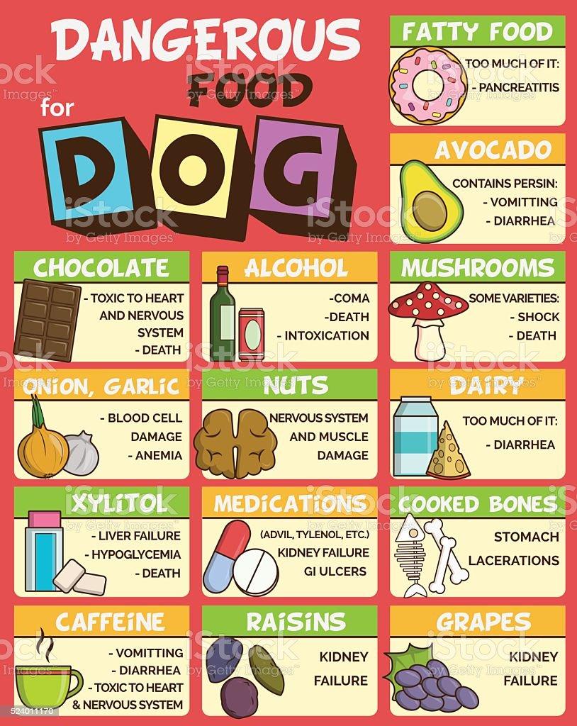 Dangerous food for dogs vector art illustration