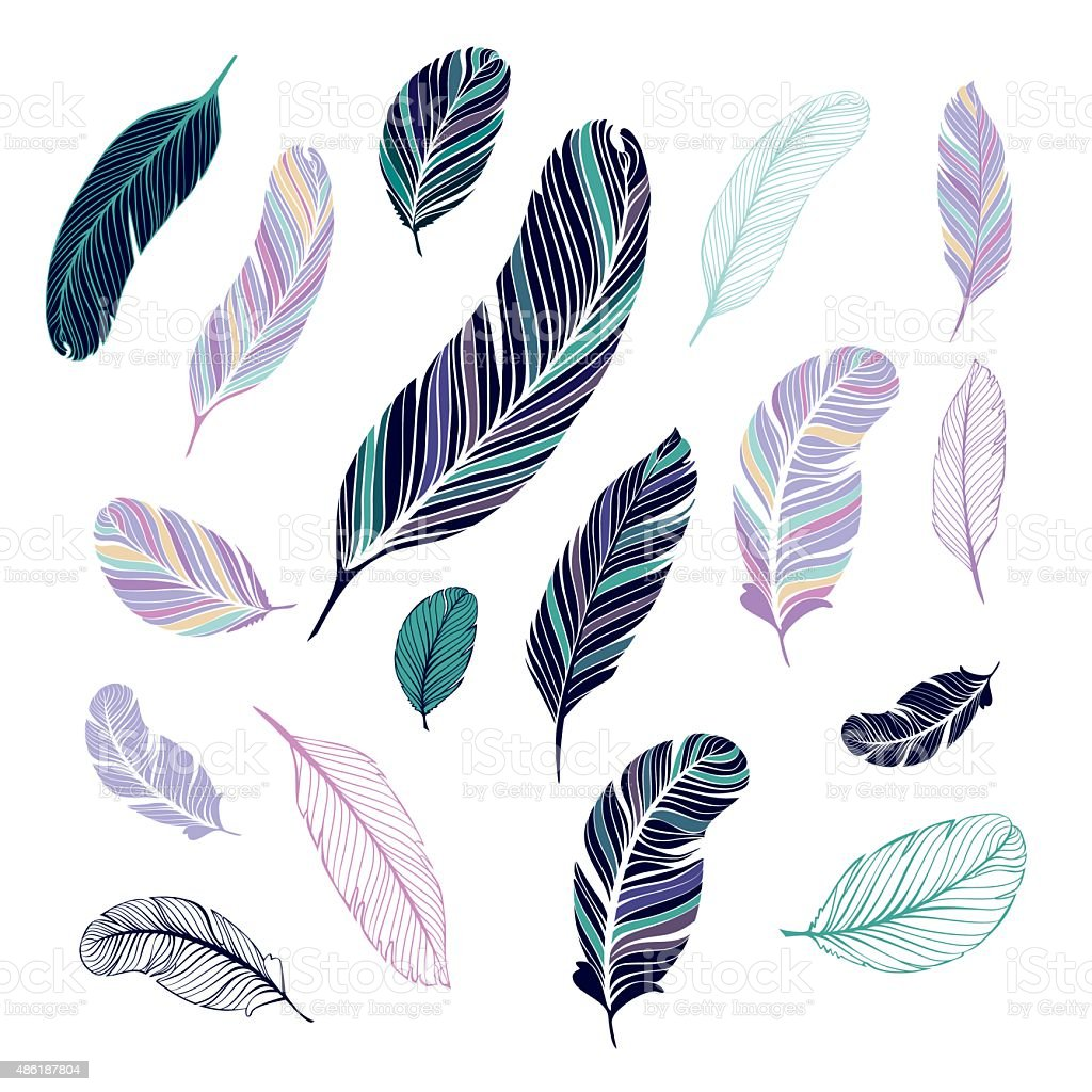 Dark and light colored feathers. vector art illustration