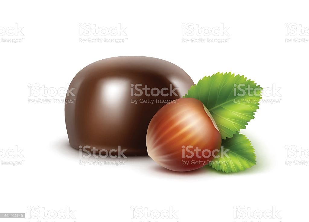 Dark Black Bitter Chocolate Candy with Hazelnuts Isolated on Background vector art illustration