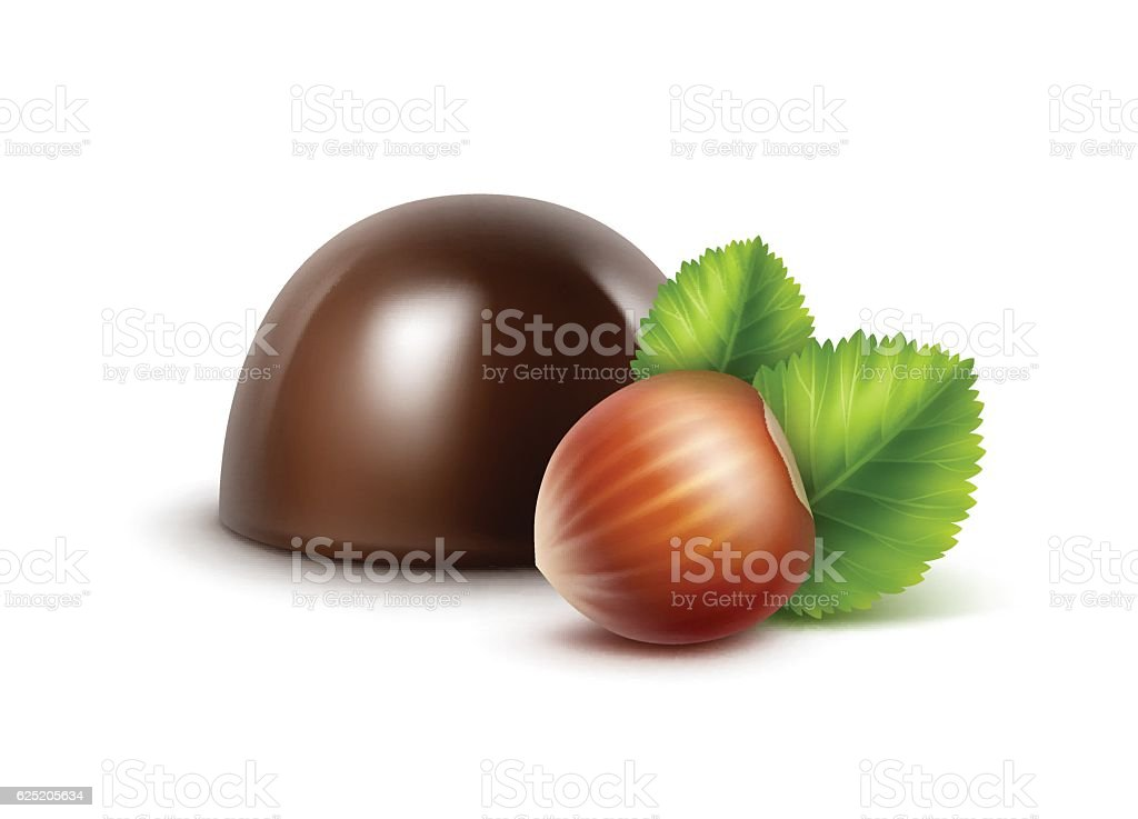 Dark Black Bitter Chocolate Candy with Hazelnuts vector art illustration