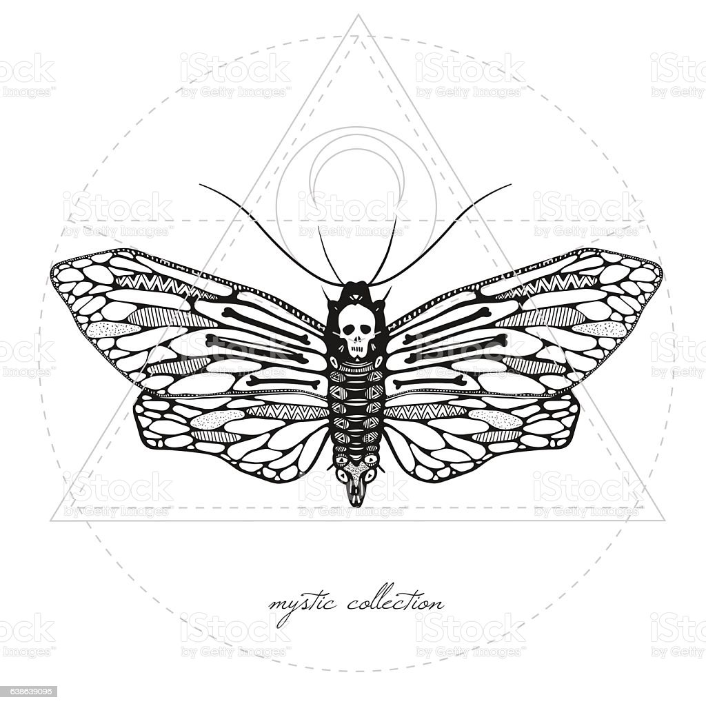 dead's head moth mystic illustration vector art illustration