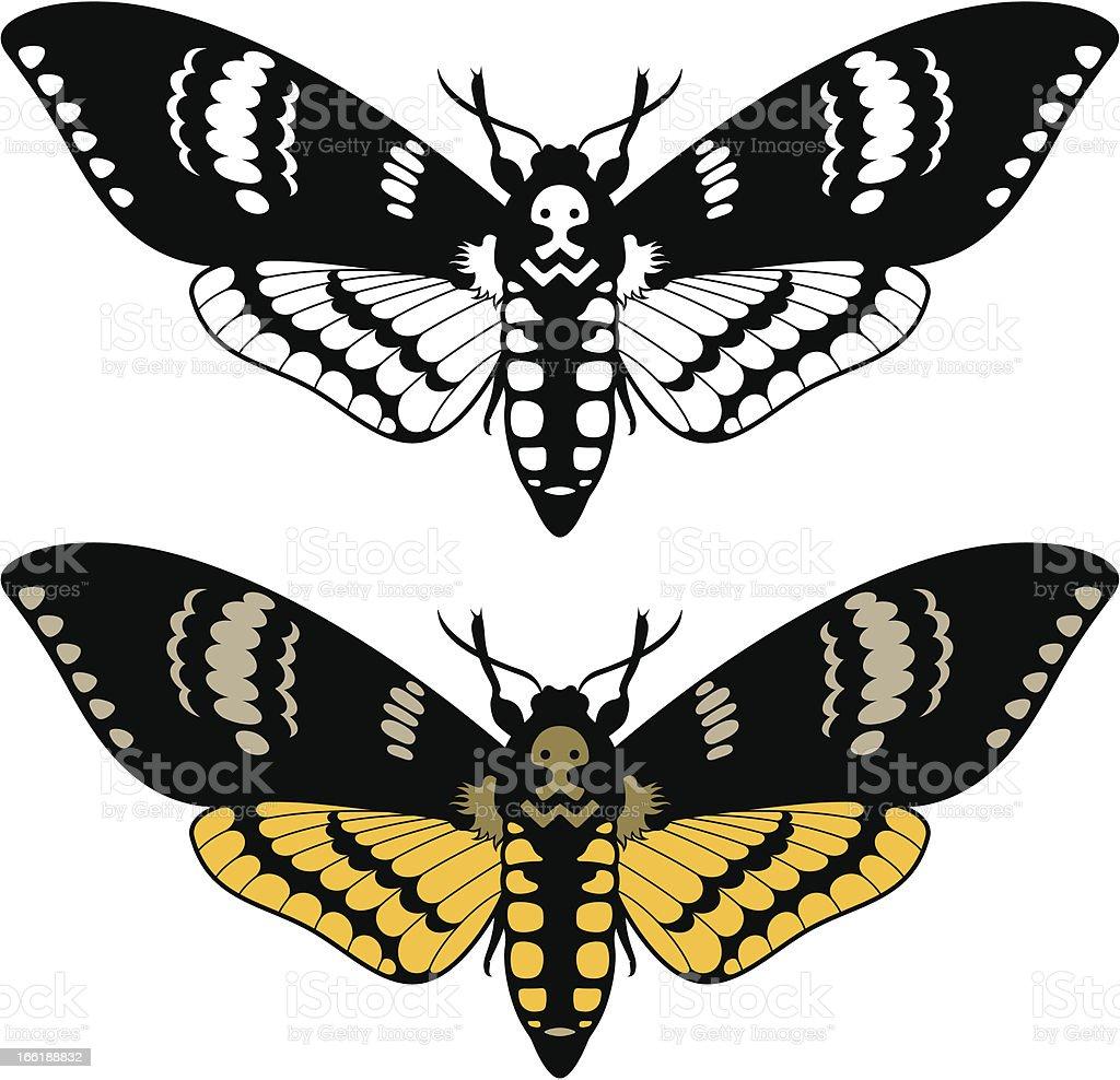 Death's head hawk moth royalty-free stock vector art