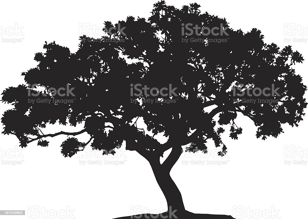 Deciduous tree silhouette royalty-free stock vector art