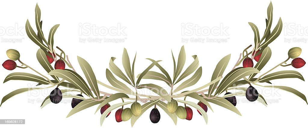 Decorative Olive Branch Border royalty-free stock vector art