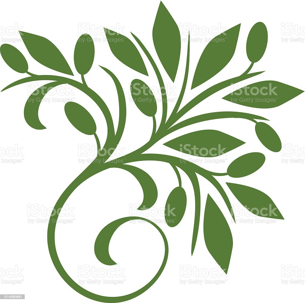Decorative olive vector art illustration