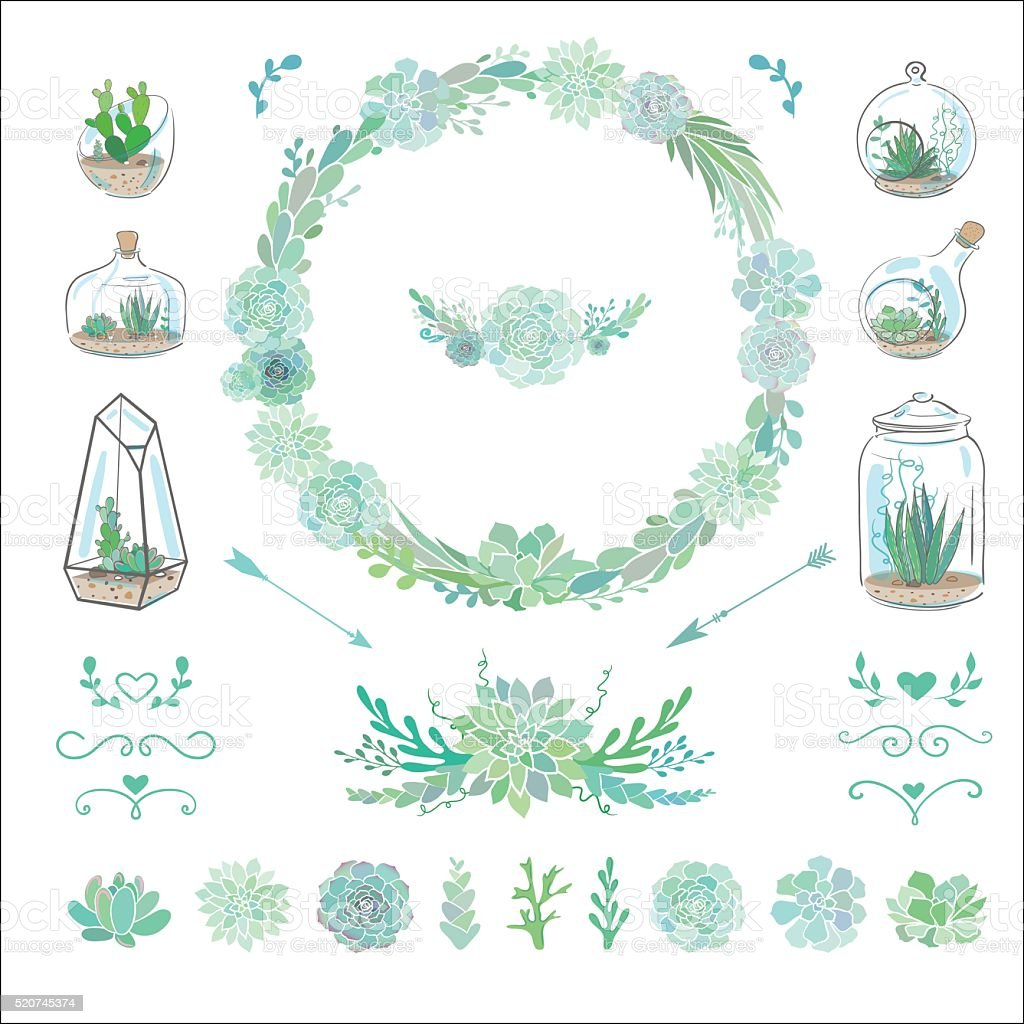 decorative set with succulents vector art illustration