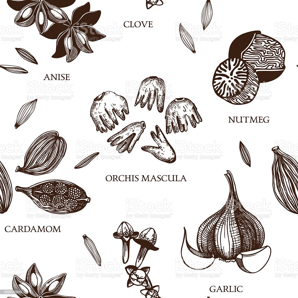 Decorative vintage spice background. vector art illustration